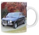 Cup Volvo 164