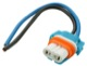 1069986 Lampenträger universal HB3 (P20d)