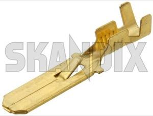Stecker Flachstecker mit Rastnase 6,3 mm  (1000454) - universal  - crimpen flachstecker flachsteckoese flachsteckverbinder kabelquetschverbinder kabelschuh kabelstecker kabelverbinder quetschverbinder stecker stecker flachstecker mit rastnase 6 3mm stecker flachstecker mit rastnase 63mm Hausmarke 1,5 15 1 5 1,5 15mm² 1 5mm² 2,5 25 2 5 2,5 25mm² 2 5mm² 6,3 63 6 3 6,3 63mm 6 3mm flachstecker isoliert maennlich messing mit mm mm² nicht rastnase vermessingt vermessingter