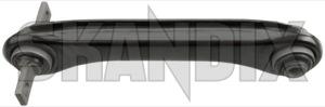 Achslenker, Hinterachse Spurstange / Achsstrebe links oben 30818096 (1006996) - Volvo S40 V40 (-2004) - achslenker hinterachse spurstange  achsstrebe links oben achslenker hinterachse spurstange achsstrebe links oben achsstreben hinterachsenlenker hinterachslenker hinterachsstreben lenker s40 s40i streben v40 v40i Hausmarke /    achsstrebe buchsen linker links mit oben oberer spurstange
