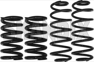 Tieferlegungssatz linear 30 mm  (1013130) - Volvo 164 - fahrwerksfedersatz federnsatz federsatz limousine p164 schraubenfedersatz sedan senksatz sportfahrwerk stufenheck tieferlegungsfahrwerk tieferlegungsfedern tieferlegungssaetze tieferlegungssatz linear 30mm lesjoefors 30 30mm abe linear mm ohne