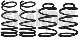 Tieferlegungssatz 30 mm  (1013141) - Volvo S80 (-2006) - fahrwerksfedersatz federnsatz federsatz limousine s80 s80i s80l schraubenfedersatz sedan senksatz sportfahrwerk stufenheck tieferlegungsfahrwerk tieferlegungsfedern tieferlegungssaetze tieferlegungssatz 30mm lesjoefors 30 30mm fahrzeuge fuer mit mm niveauregulierung ohne tuevgutachten tuev gutachten