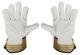 Gloves  (1049760) - universal