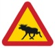 Sticker Elk Warning black-red-yellow  (1055313) - universal