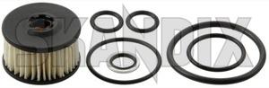 Kraftstofffilter Flüssiggas (LPG) Satz  (1014961) - universal  - autogasfilter benzinfilter benzinleitungsfilter filter gasfilter kraftstofffilter kraftstofffilter fluessiggas lpg satz kraftstoffilter kraftstofilter spritfilter Hausmarke lpg  lpg  autogas emma fluessiggas fluessigphase fuer gas satz set system valtek zavoli