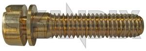 Scheinwerfereinstellung 87690 (1018463) - Volvo 120 130 220, PV - 121 122 122s 130 131 210 220 444 445 544 amazon amazone buckelvolvo duett einstellen einstellschrauben justierschrauben katterug katzenbuckel p120 p121 p122 p122s p130 p131 p210 p220 p445 pv444 pv544 scheinwerfereinstellschrauben scheinwerfereinstellung scheinwerferjustierschrauben scheinwerferstellschrauben scheinwerfertopfeinstellschrauben scheinwerfertopfjustierschrauben scheinwerfertopfstellschrauben stellschrauben Hausmarke