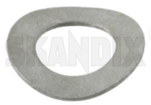 Federscheibe 6 mm  (1019659) - universal  - federscheibe 6mm federscheiben Hausmarke 6 6mm mm stahl verzinkt verzinkter zink
