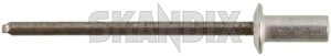 Rivet, Trim moulding 664639 (1032318) - Volvo P1800 - 1800e p1800e rivet trim moulding Genuine 1032317 bpillar b pillar side window