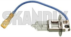 Bulb H3 Spotlight 6 V 55 W  (1054314) - Volvo 120 130, PV - bulb h3 spotlight 6v 55w osram 55 55w 6 6v h3 spotlight v w