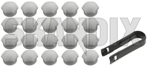 Cap, Wheel bold Kit 31471687 (1054635) - Volvo C30, C70 (2006-), S40 V50 (2004-), V40 (2013-), V40 XC - bolts cap wheel bold kit head caps lug nuts covers protective caps screws trim Genuine 19 kit silver